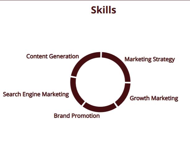 Digital marketers skills