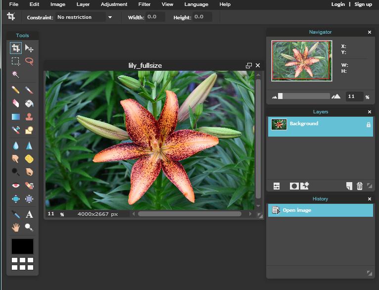 Graphic Designing Software - Pixlr