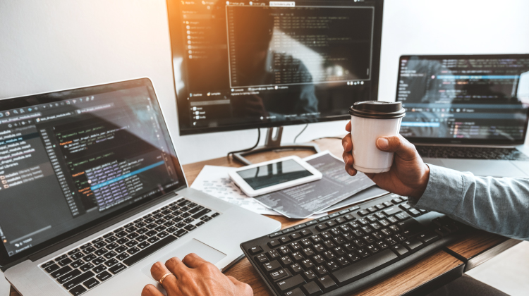 How To Begin a Successful Web Development Career in 2020